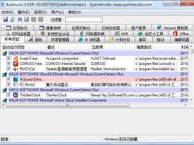 启动项目管理Autoruns v13.96汉化版