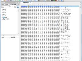 十六进制/文本编辑器UltraEdit v24.20.0.51中文绿色特别版