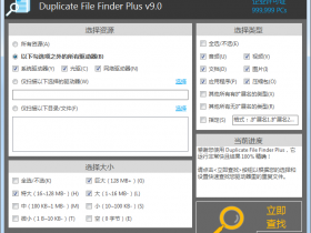 重复文件查找器 Duplicate File Finder Plus v9.0.044中文绿色企业版