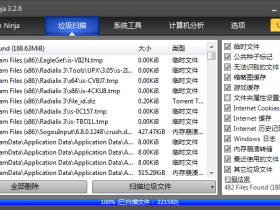 系统忍者System Ninja v3.2.7中文绿色优化版