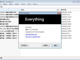 最快最好用本地文件搜索工具 Everything v1.4.1.935 中文绿色便携版+单文件