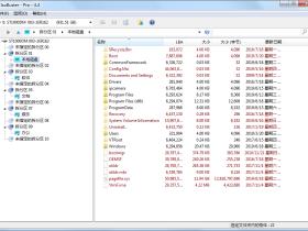 镜像数据抓取和恢复工具 IsoBuster v4.4中文绿色专业版