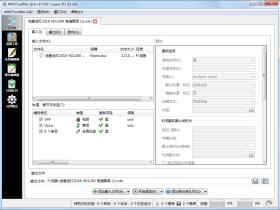 视频封装工具 MKVToolNix v40.0.0 中文精简绿色便携版