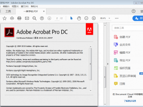 PDF阅读和编辑器 Adobe Acrobat Pro DC v2019.021.20056 中文特别版