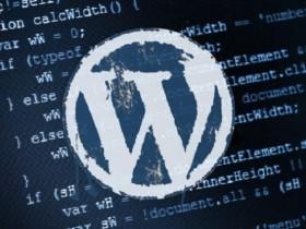 博客程序 WordPress v5.2.4 安全更新发布(附原版下载)