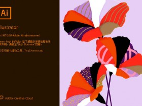 矢量图 Adobe Illustrator 2020 v24.0.0.328 中文直装破解版