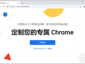谷歌浏览器 Google Chrome v90.0.4430.212 正式版绿色便携增强版